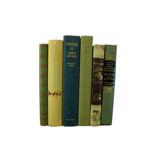 Green Decorative  Book Stack for  Decor, S/6
