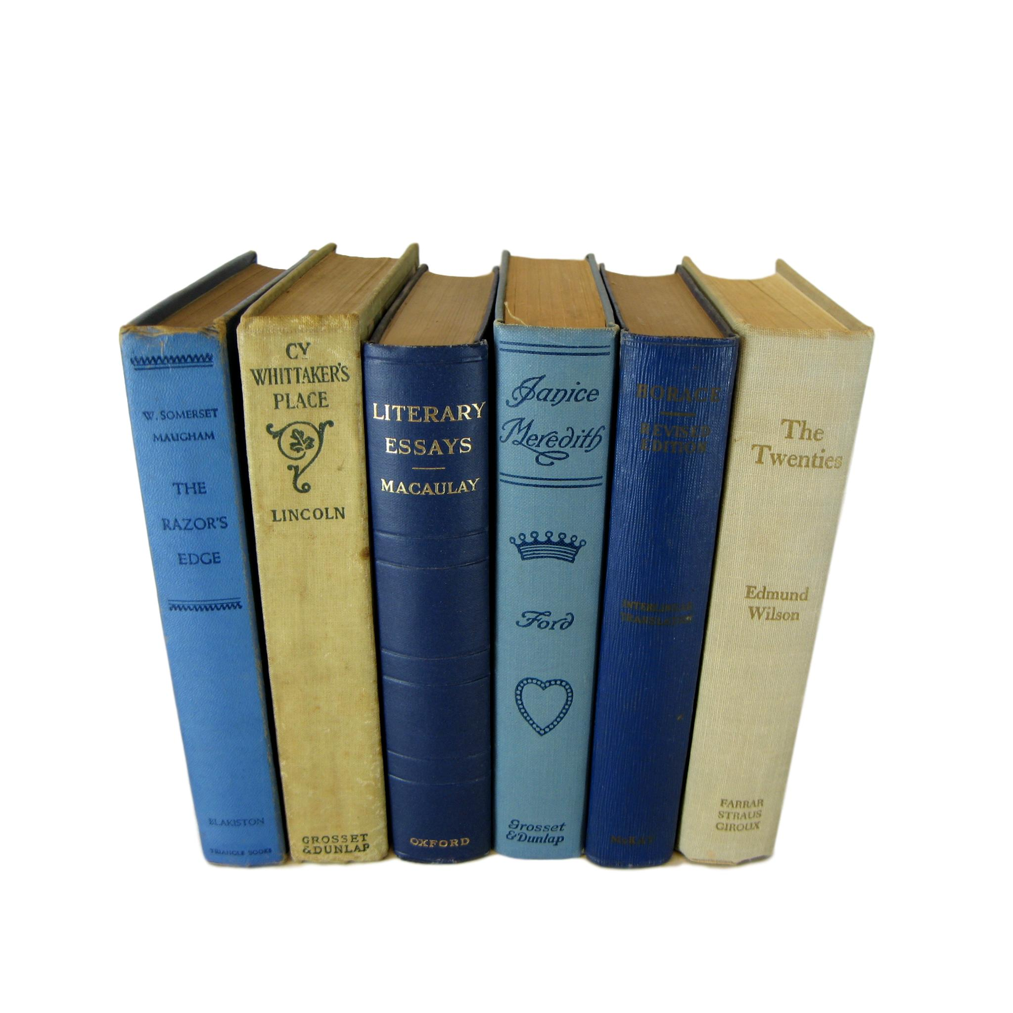 Blue and Tan  Decorative Set of Books, S/6 - Decades of Vintage