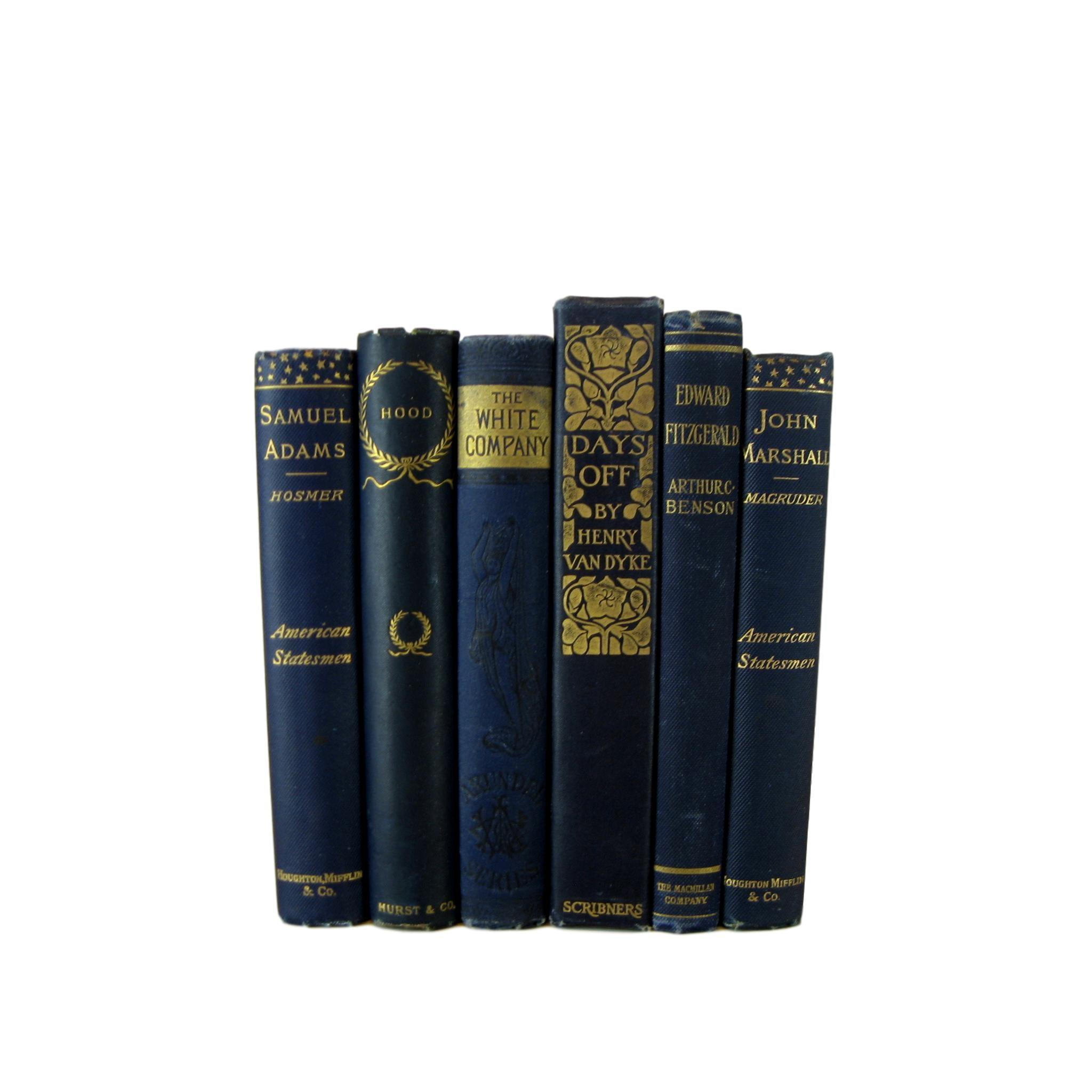 Blue Antique Book Selections, S/6 - Decades of Vintage