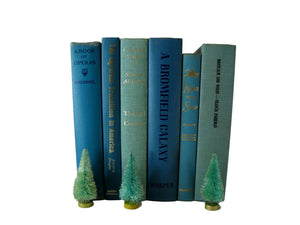 Blue Modern Decorative Books Curated with Vintage Books, S/6 - Decades of Vintage