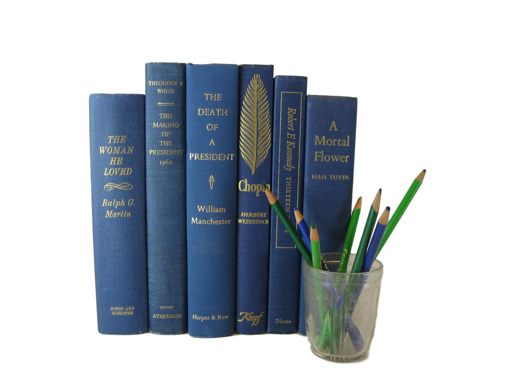 Blue Books for Decorating with Old Books, S/6 - Decades of Vintage