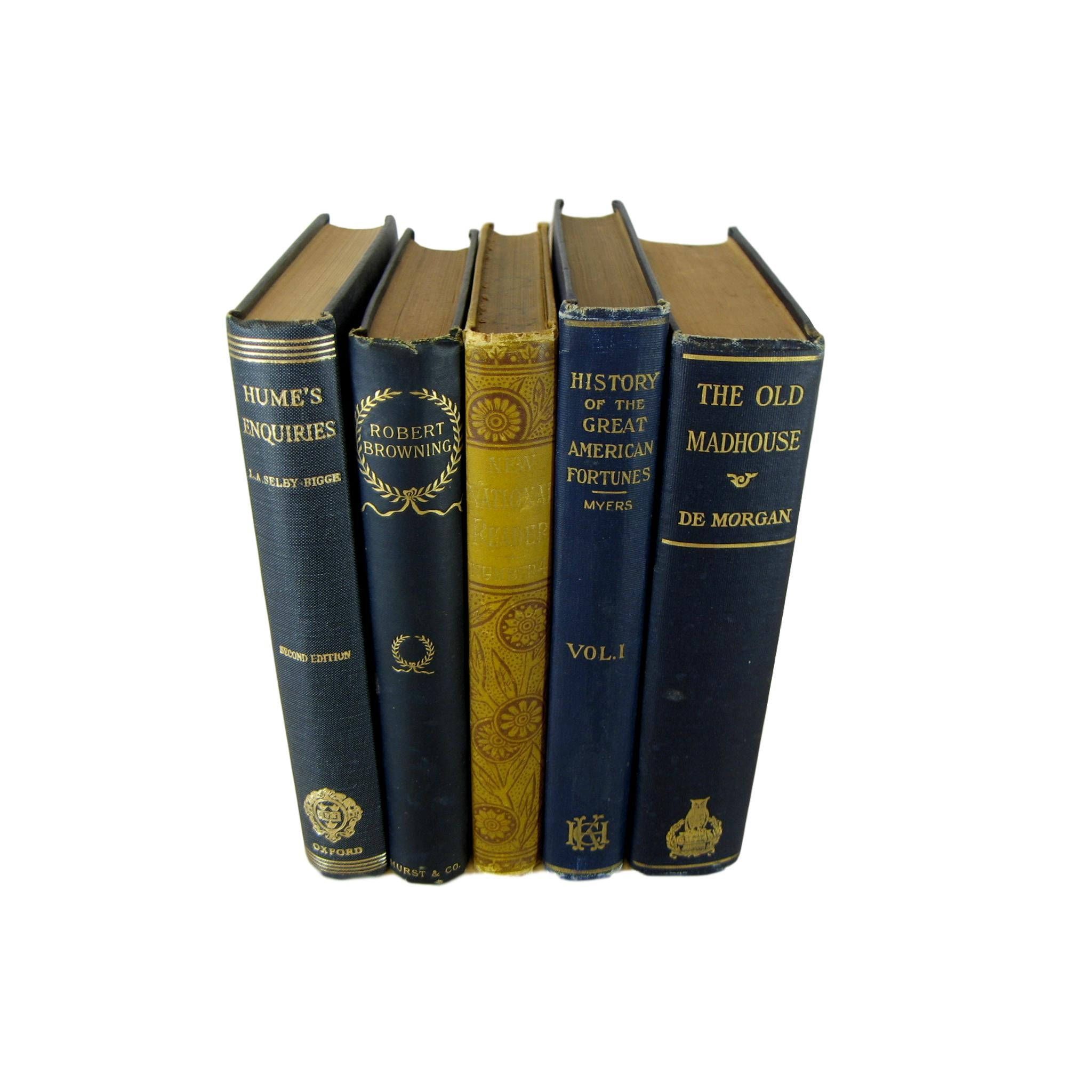 Antique Blue Decorative Book Set, S/5 - Decades of Vintage