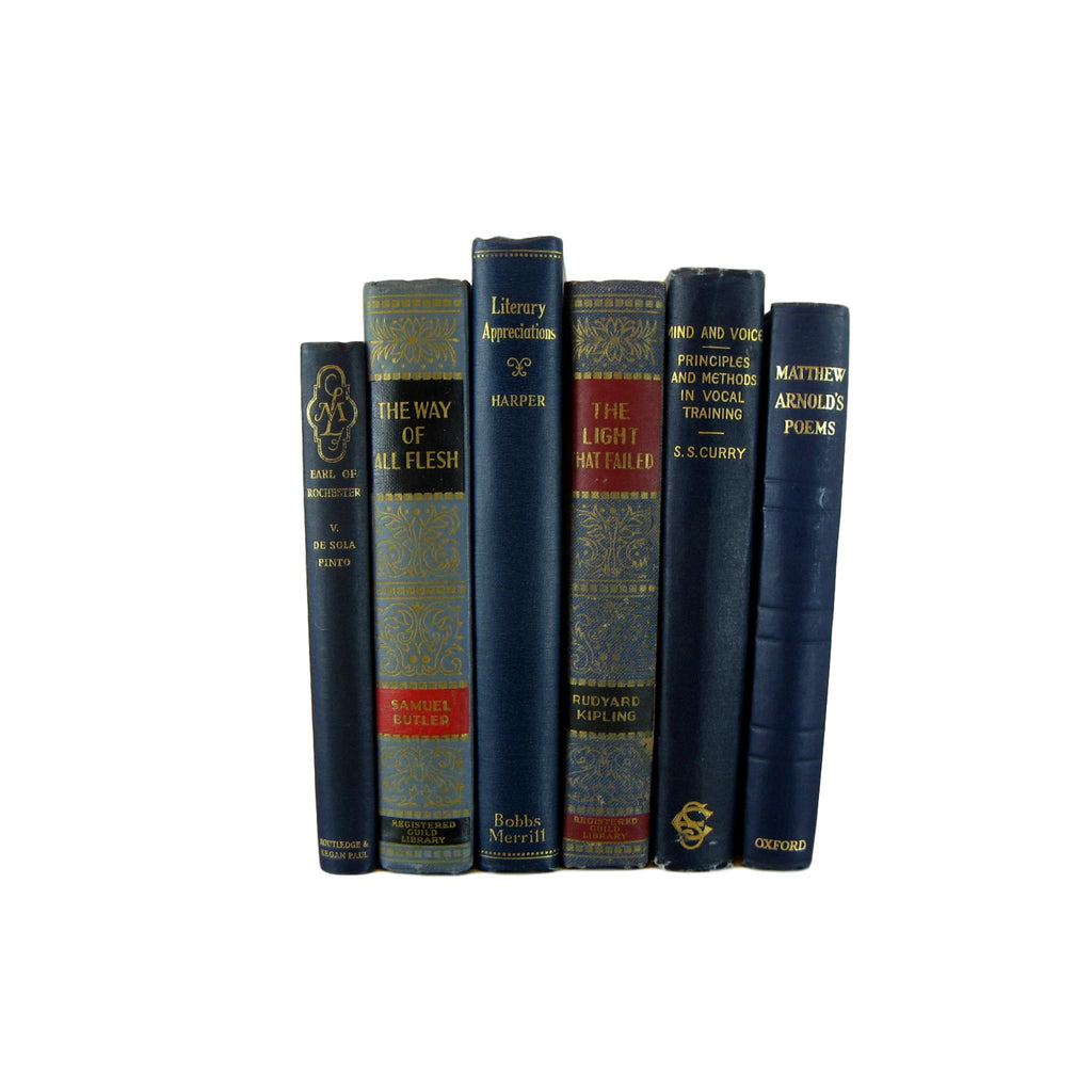 Antique and Vintage Decorative Books in Blue, S/6 - Decades of Vintage