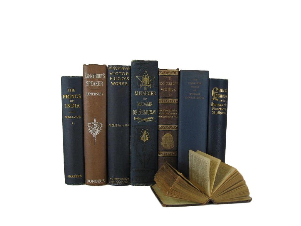 Brown and Blue Decorative Book Set, S/7 - Decades of Vintage
