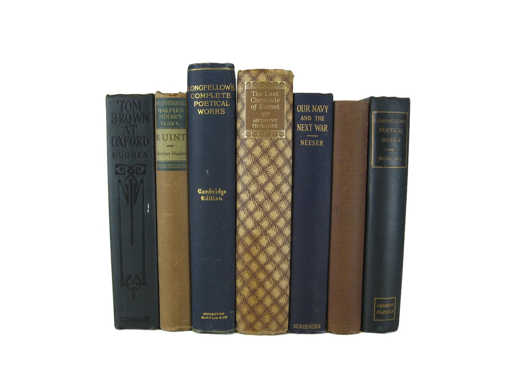 Blue and Brown Decorative Set of Books, S/7 - Decades of Vintage