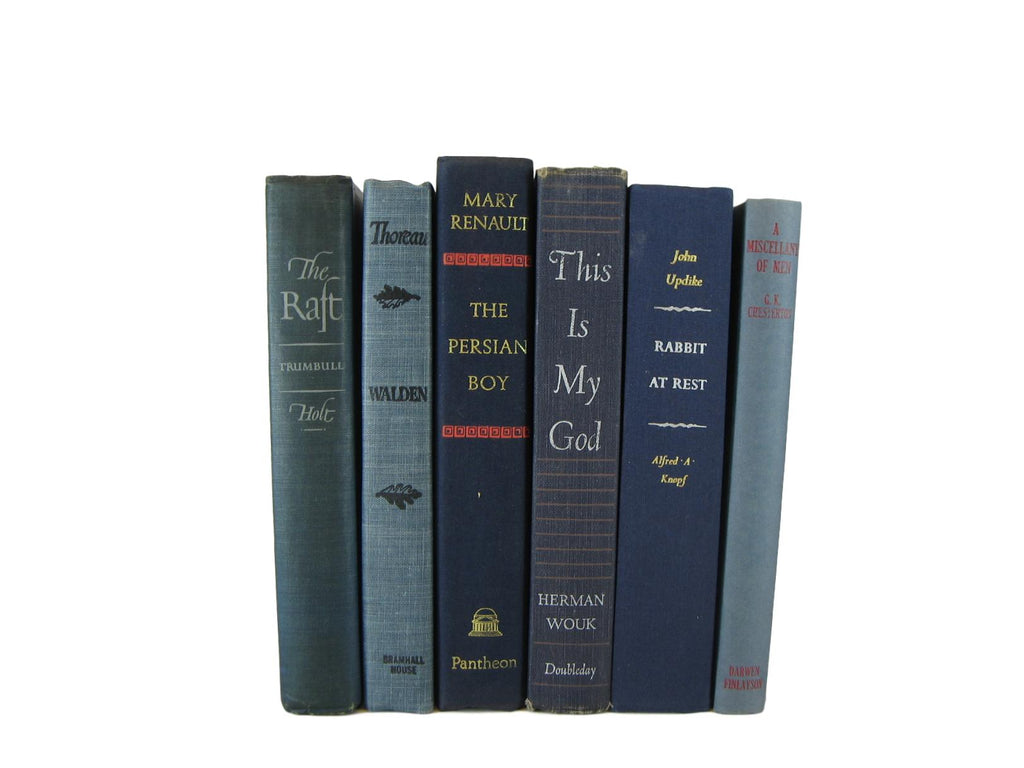Blue  Decorative Books for Shelf Display and  Decor, S/6 - Decades of Vintage