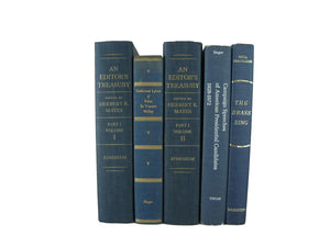 Blue Decorative Books for Display, S/5 - Decades of Vintage