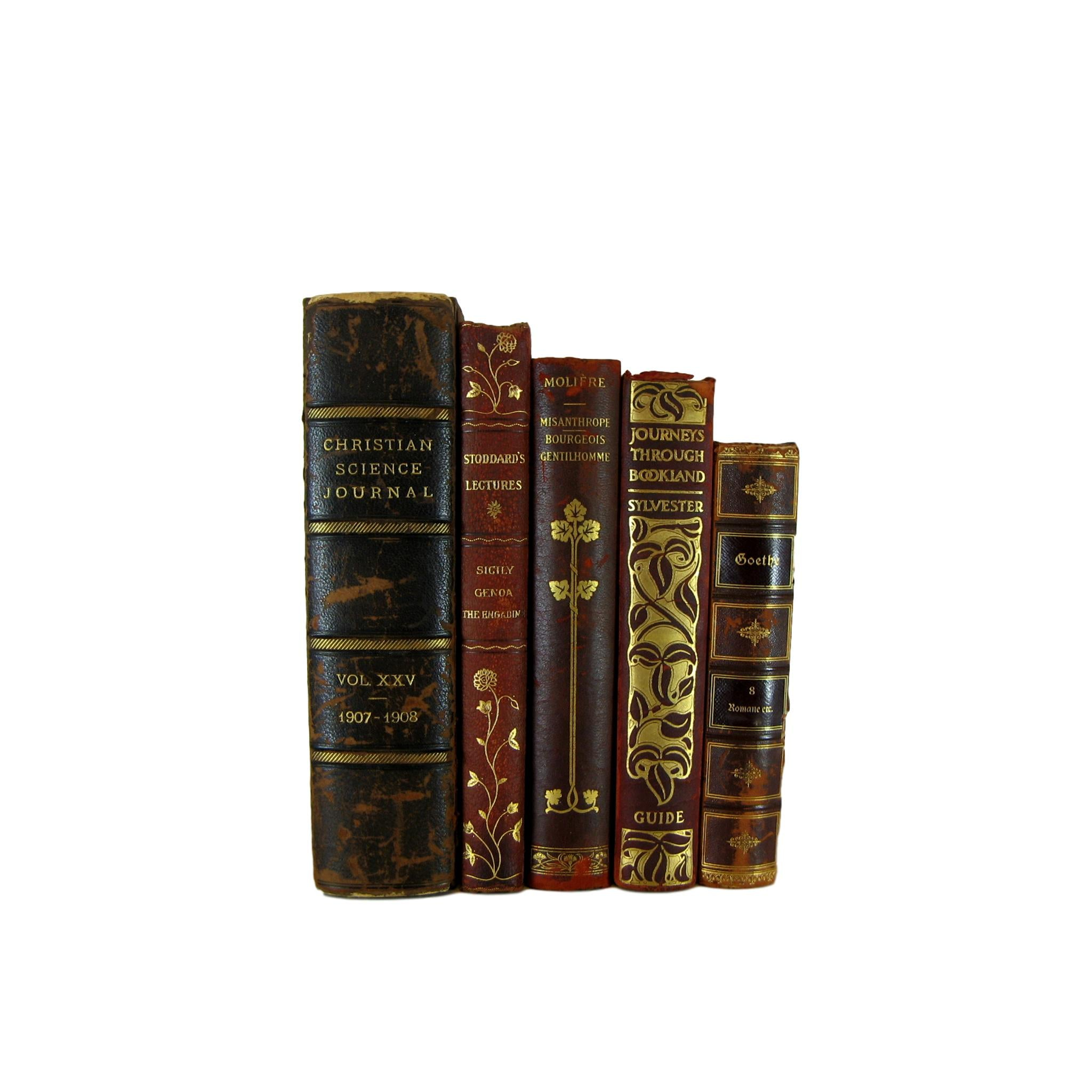 Leather Decorative  Books for Mantel Decor, S/5 - Decades of Vintage
