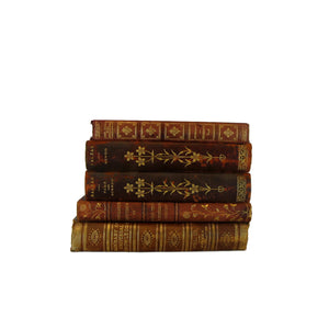 Vintage Leather-Bound Decorative Book Set for Decor, S/5 - Decades of Vintage