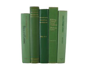 Decorative  Book Stack in Shades of Green , S/5 - Decades of Vintage