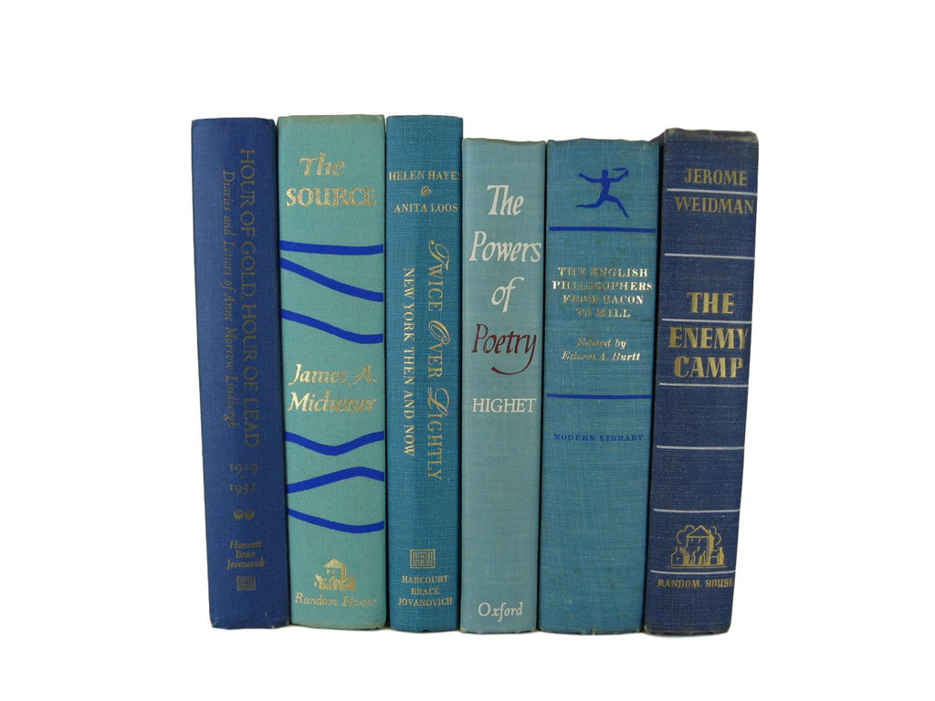 Blue Green Decorative Books by Color for Bookshelf Decor, S/6