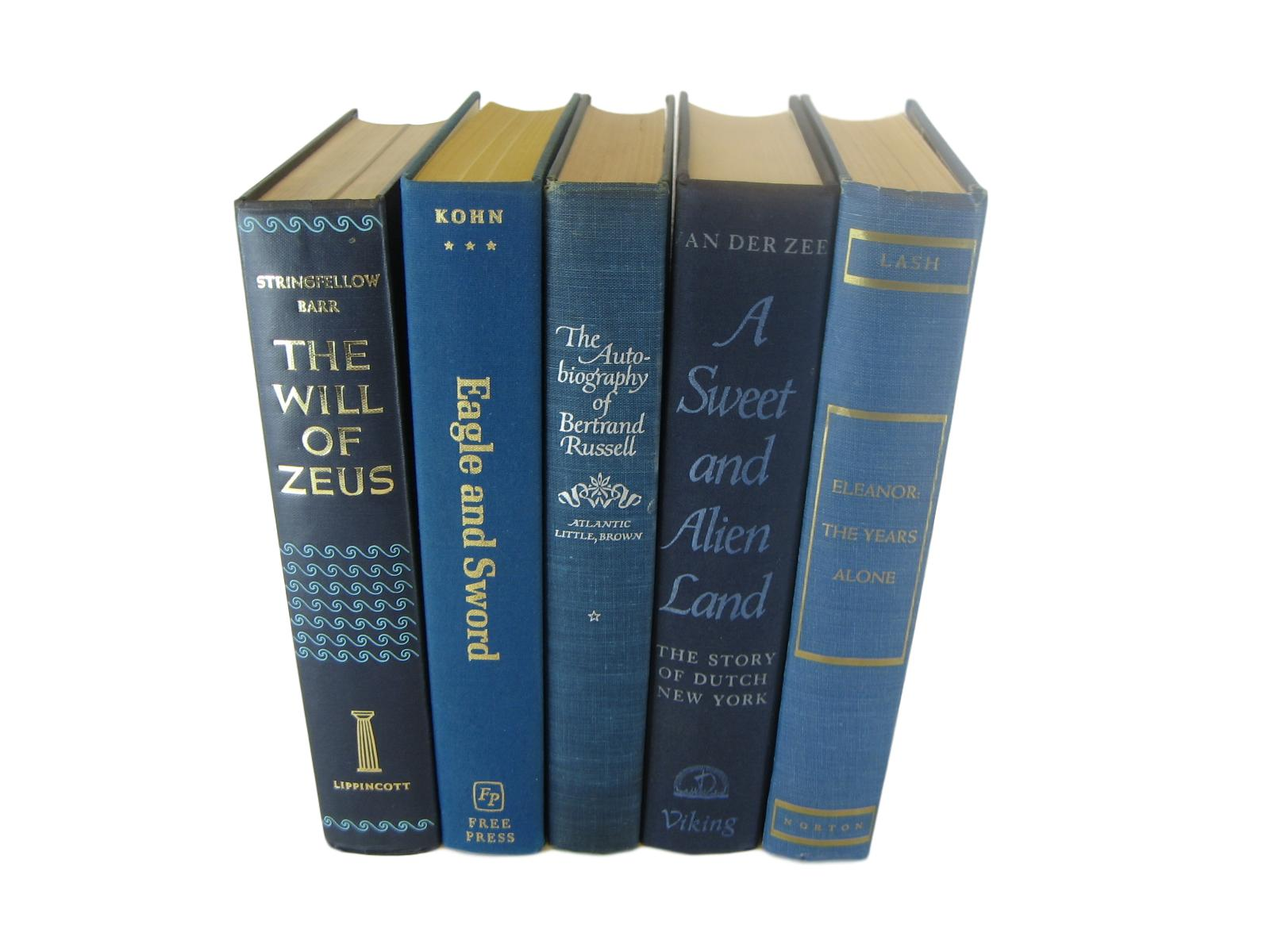 Blue Home Decor Book Collection, S/5 - Decades of Vintage