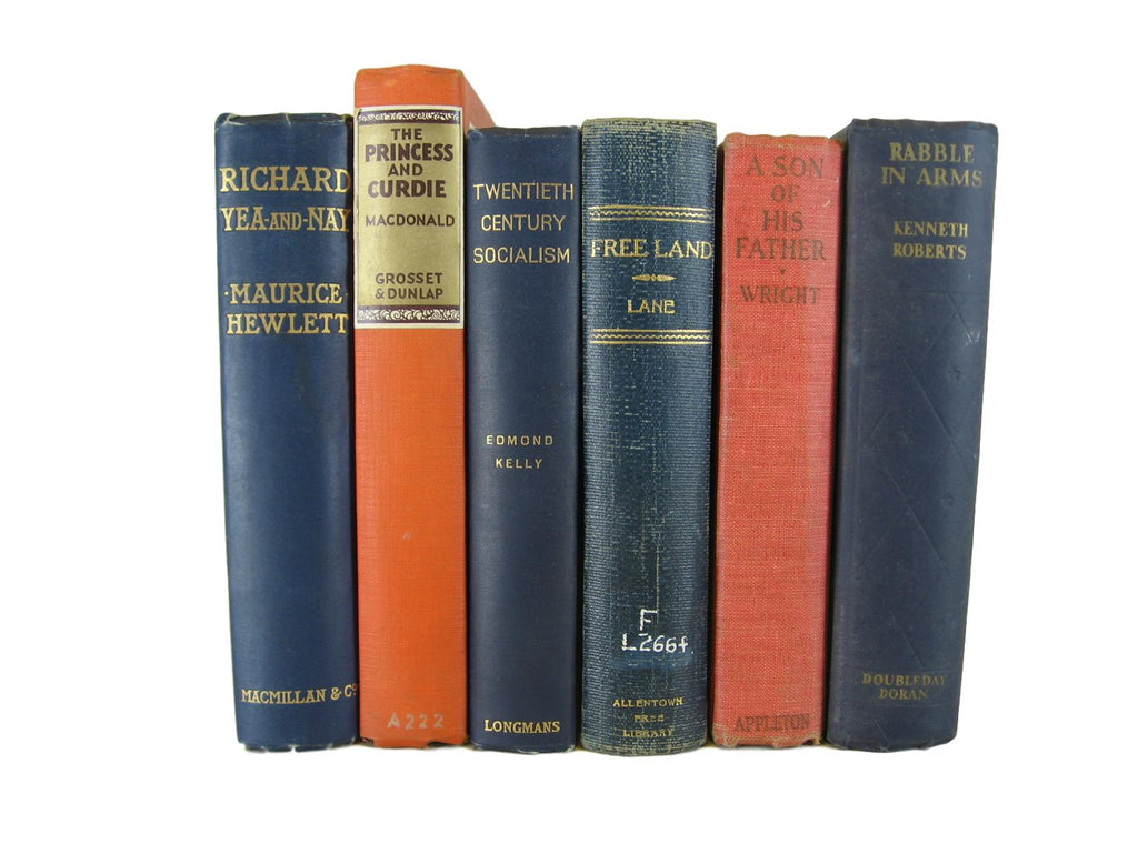 Blue and Salmon Vintage Decorative Books, S/7 - Decades of Vintage