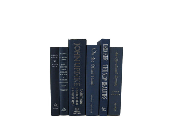 Blue  Vintage Book Decor, S/6 - Decades of Vintage