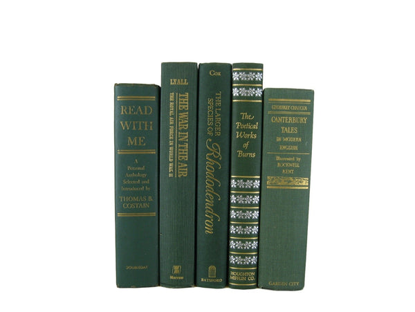 Blue Old Vintage Books for Decorating, S/5 - Decades of Vintage
