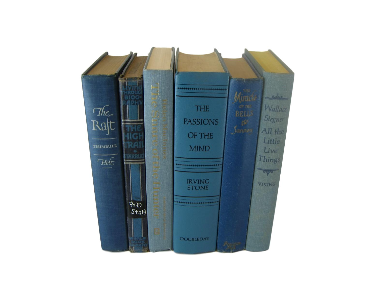 Blue Set of Decorative Books, S/6 - Decades of Vintage