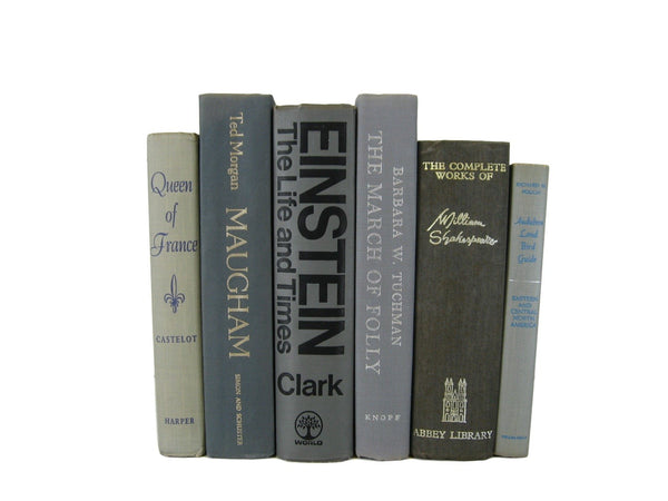 Gray Decorative Accent Books by Color, S/6 - Decades of Vintage