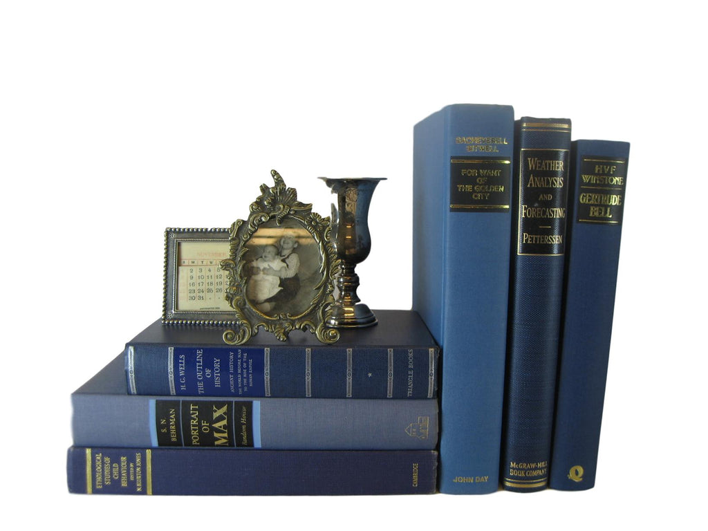 Blue Decorative Vintage Books for Decorating and Bookshelf Design, S/6 - Decades of Vintage