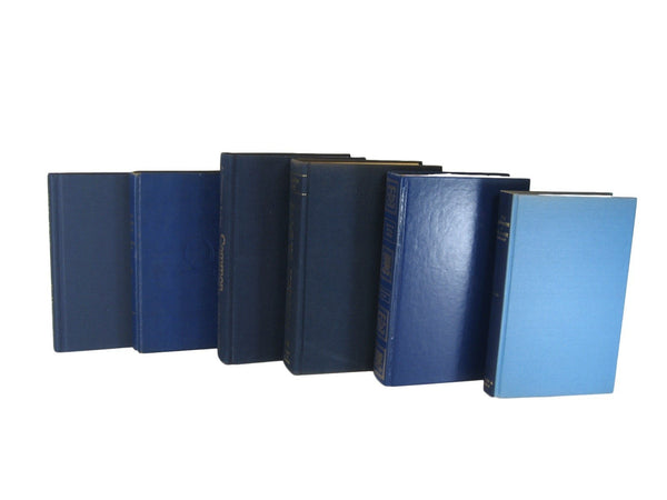 Blue Decorative Books, S/6 - Decades of Vintage