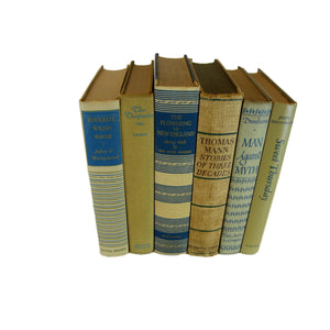Soft Brown, Neutral and Blue Decorative Used Books for Shelf Decor, S/6 - Decades of Vintage