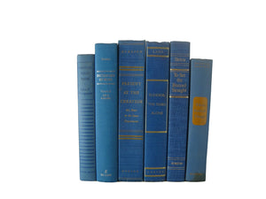 Blue Vintage Decorative Books , S/6 - Decades of Vintage
