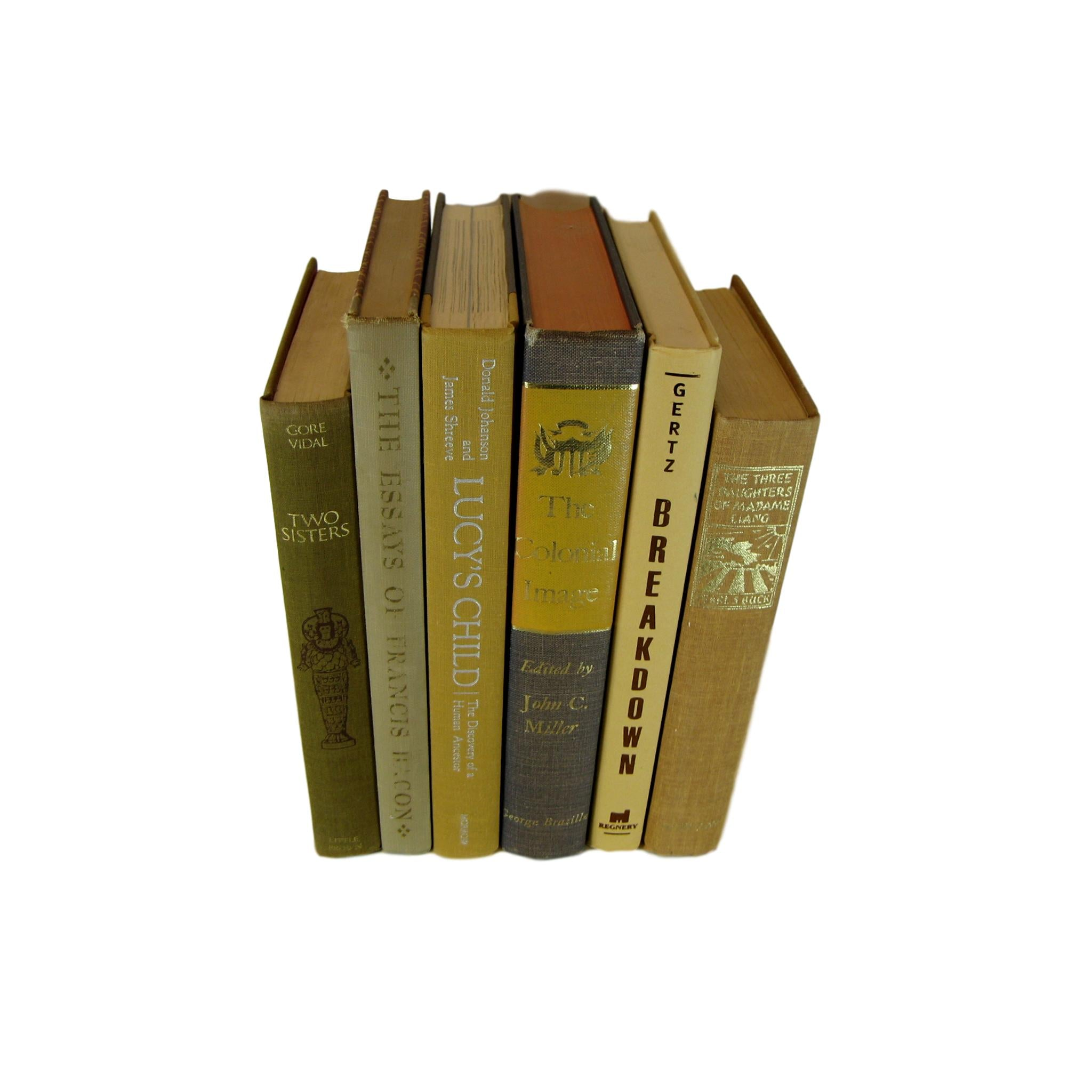 Brown Old Books for Bookshelf Decor, S/6 - Decades of Vintage