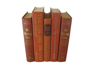 Brown Terra Cotta Books for Farmhouse Book Decor, S/5 - Decades of Vintage