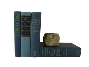 Blue Vintage  Decorative Books for Mantel Decor,  S/4 - Decades of Vintage