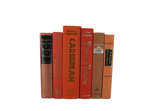 Orange Decorative Book Set, S/6 - Decades of Vintage