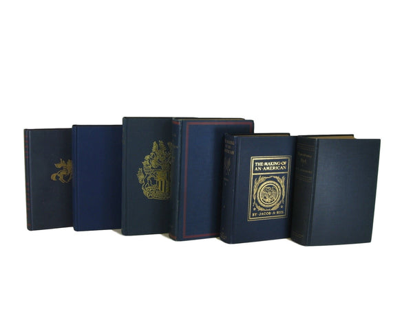 Blue Decorative Vintage Book Set, S/6 - Decades of Vintage