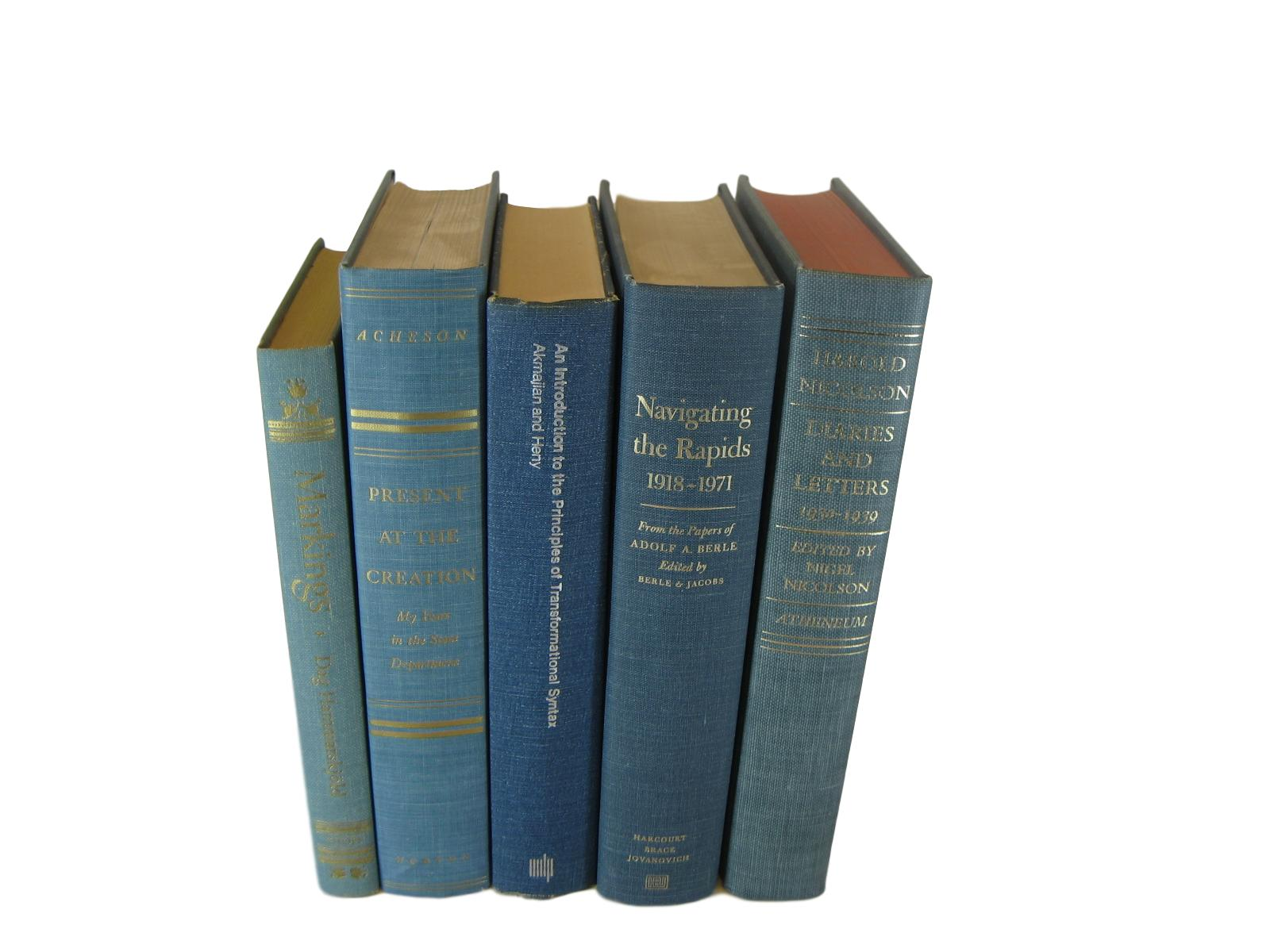 Blue Decorative  Stack of  Books, S/5 - Decades of Vintage
