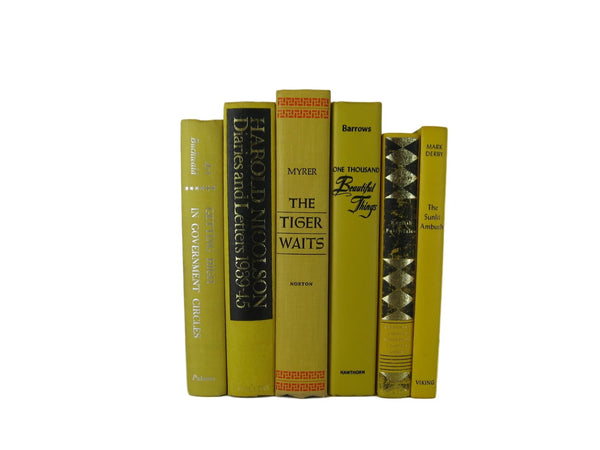 Yellow  Decorative Books, S/6 - Decades of Vintage