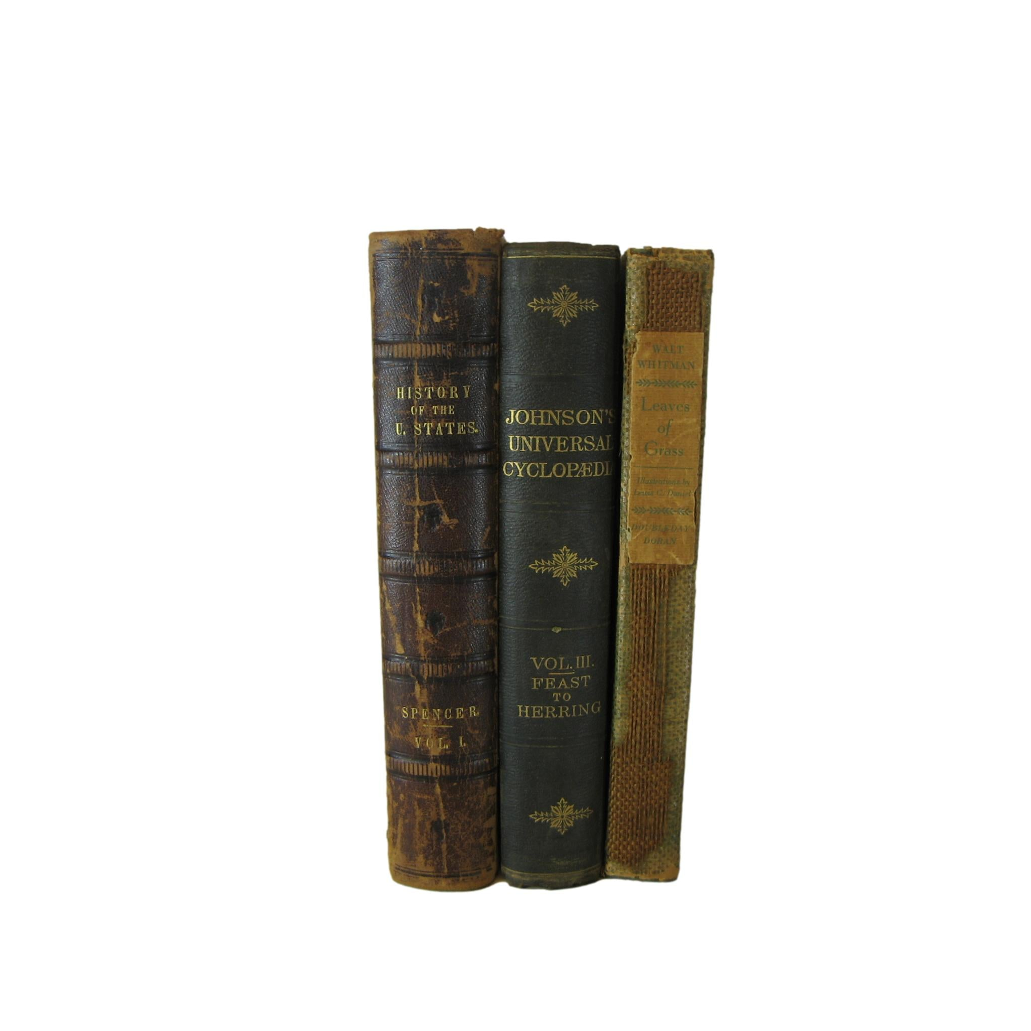 Antique Books Stack, S/3 - Decades of Vintage
