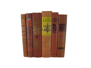 Brown Brick Books for Farmhouse Book Decor, S/6 - Decades of Vintage