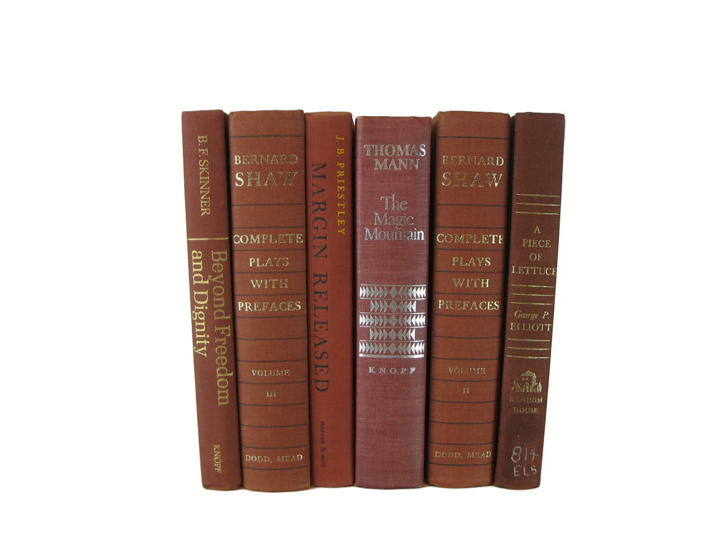 Rust Brown Vintage Decorative Books for Home Decor, S/6