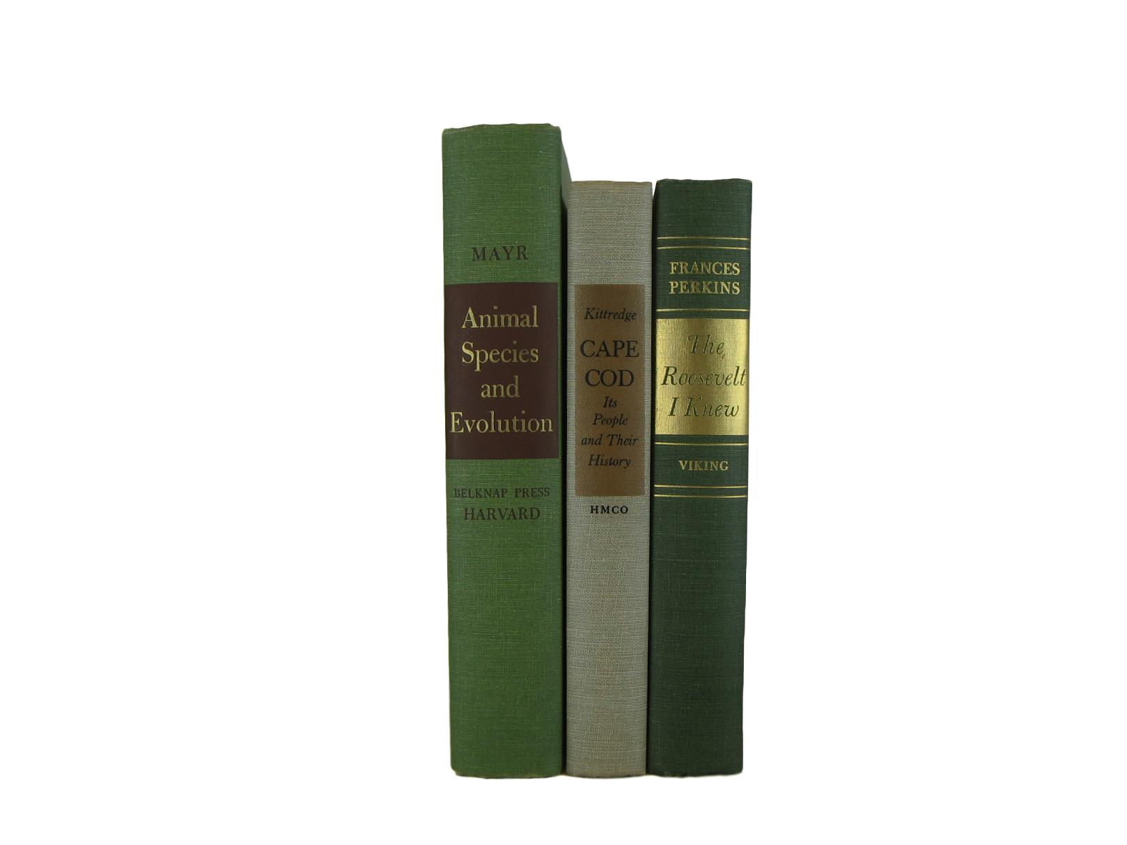 Farmhouse Rustic  Decorative Books in Green and Neutrals - Decades of Vintage