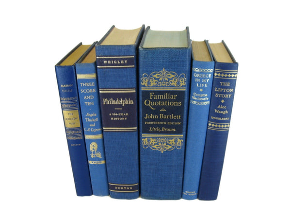Old Decorative Blue Books, S/6 - Decades of Vintage