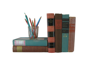 Multi-color Decorative Vintage  Books for Shelf  Decor, S/6