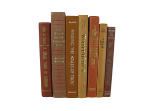 Shades of Brown Decorative  Book Set for Rustic Book Decor, S/7
