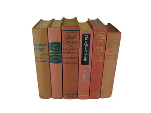 Brown Rust Books for Farmhouse Book Decor, S/6