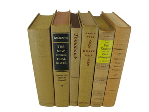 Light Brown  Books for Bookshelf Decor, S/6