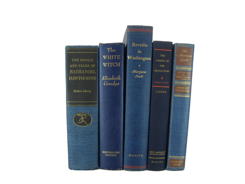 Blue  Decorative Books for Shelf Display and  Decor, S/5