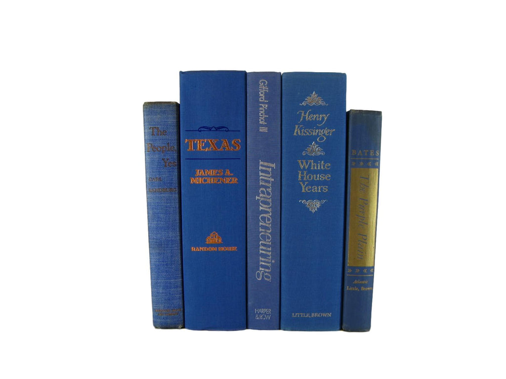 Blue  Decorative Books by Color for Bookshelf Decor, S/5