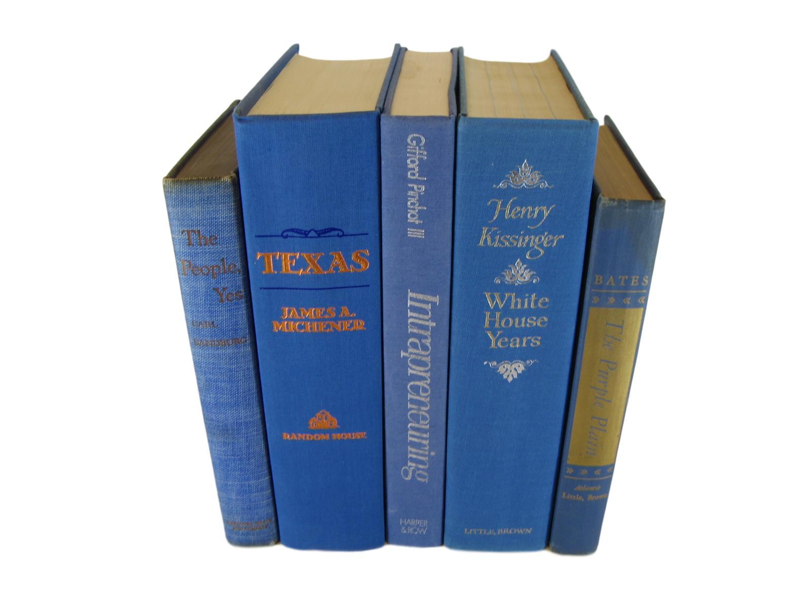 Blue  Decorative Books by Color for Bookshelf Decor, S/5 - Decades of Vintage