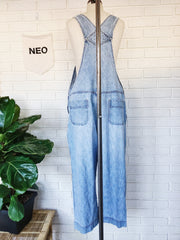 Eye Candy Hand Embroidered Vintage Denim Overalls