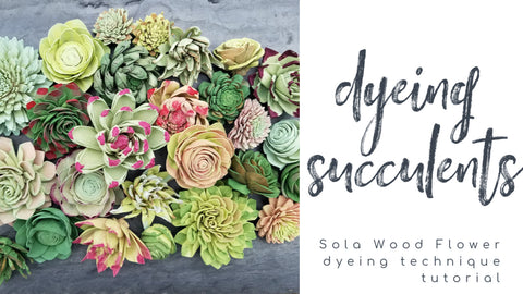 how to dye sola wood flowers succulent technique