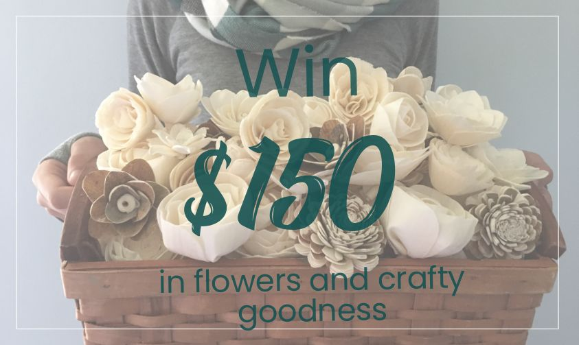Sola flower giveaway