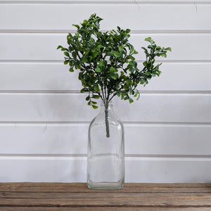 Large Boxwood Leaves _sola_wood_flowers