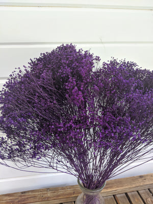 Broom Bloom - Eggplant _sola_wood_flowers