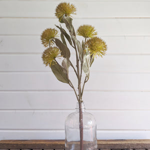 Autumn Thistle  -dark yellow - faux _sola_wood_flowers